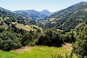 asturias131