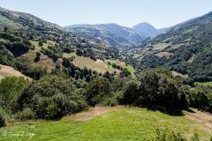 asturias132