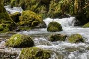 Río Naviego