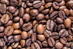 coffee (15)