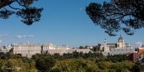 Catedral y Palacio Real