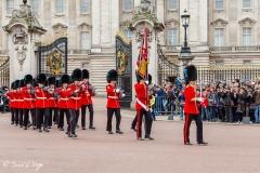 Cambio de Guardia, Palacio de Buckingham