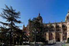 Salamanca100