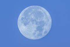Superluna diurna