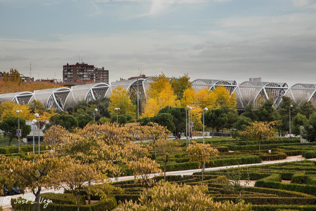 Madrid Río en otoño