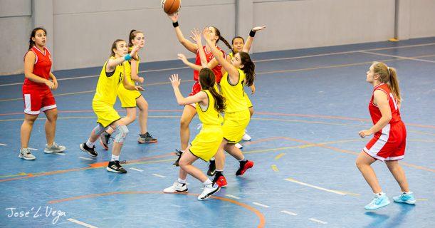 Protegido: Baloncesto 15-12-2019